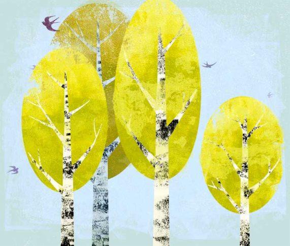 Flora Bäume