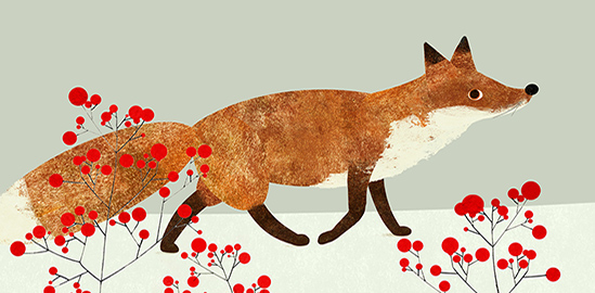 Winterfuchs Illustration Friday